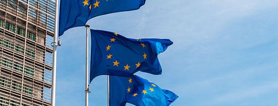 privacy-gdpr-regolamento-eu-webinar-tematiche